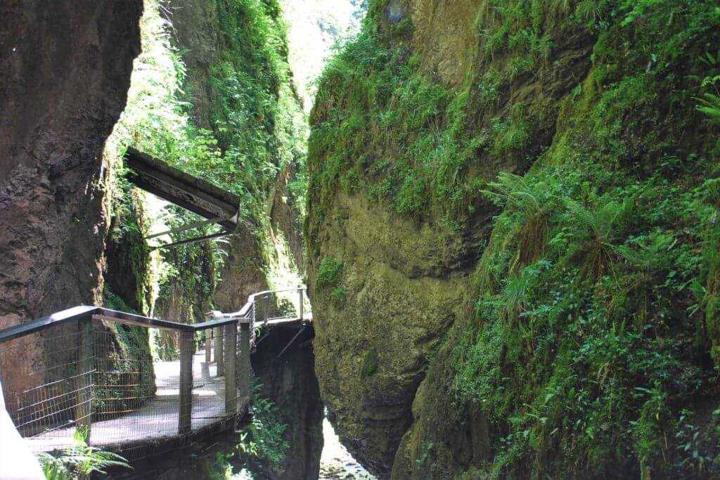 Gargantas de Kakueta, Selva de Irati
