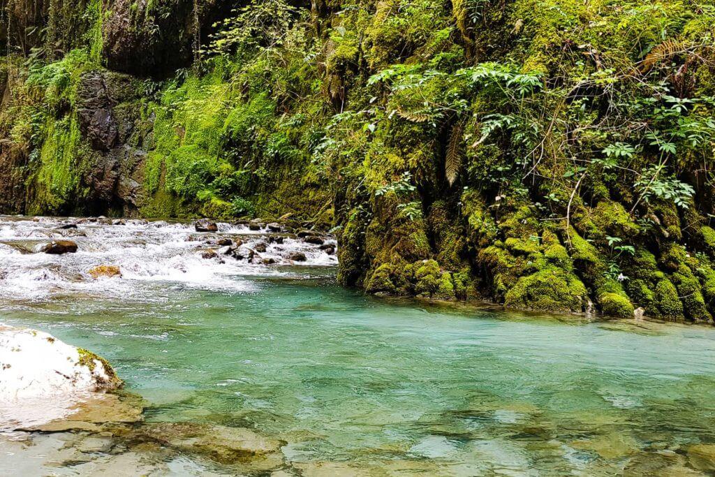 Gargantas de Kakueta, Selva de Irati 5
