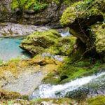 Gargantas de Kakueta, Selva de Irati 6