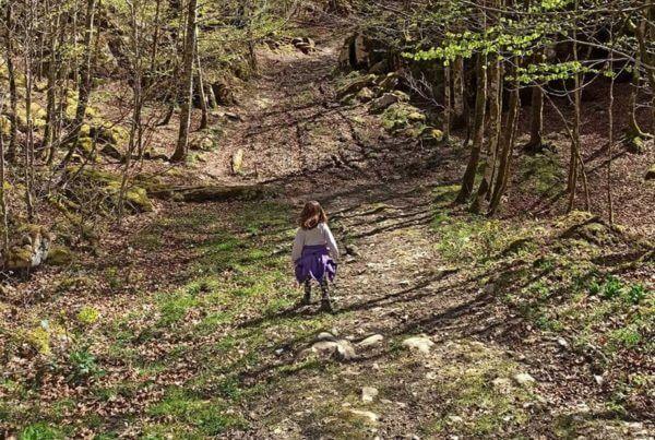 Ruta a pie circular por Ursario (Selva de Irati) SL-NA57B